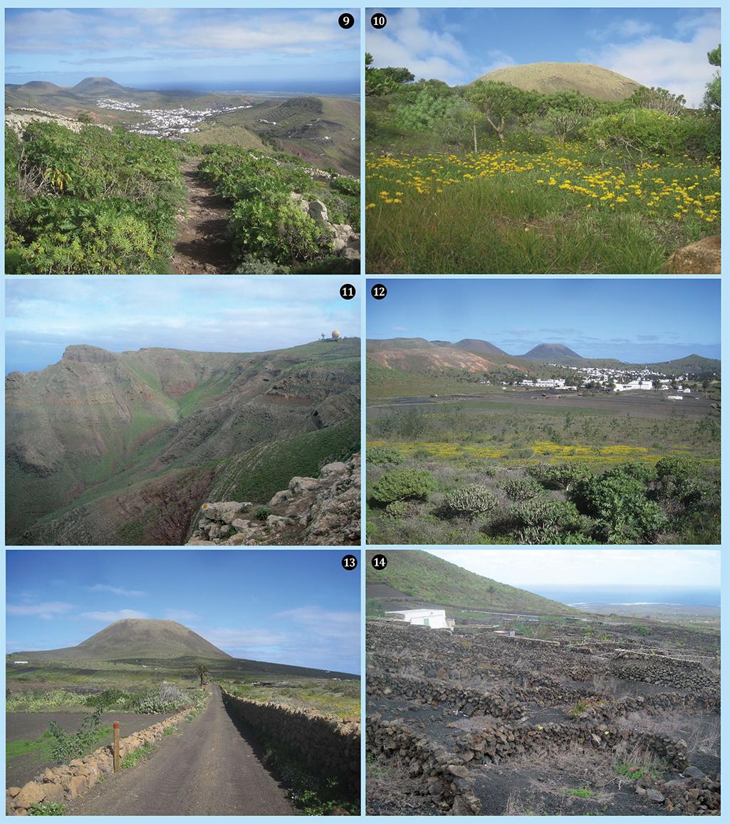 Lanzarote pic 5
