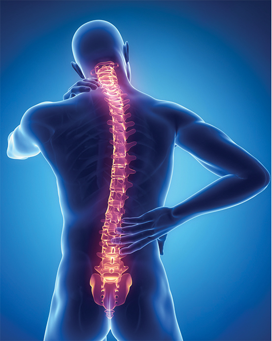 Fix my spine 3