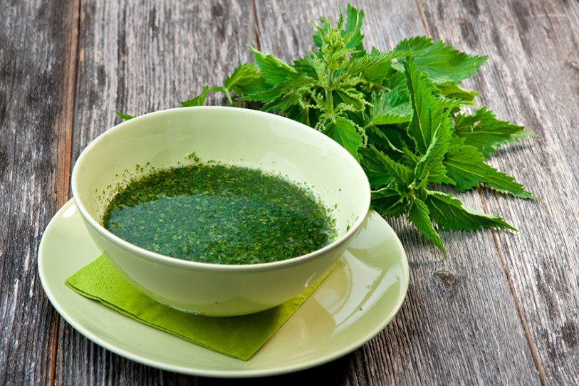 MARCH2015HerbalClinicpic2forNettlejuice